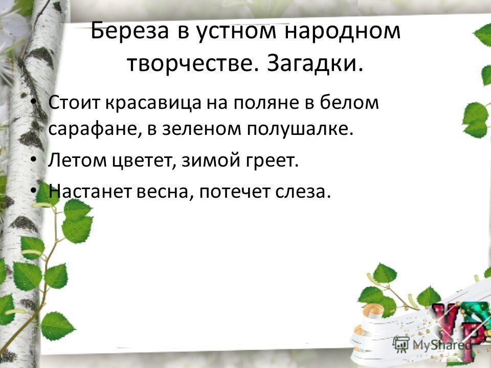 Береза в устном народном творчестве. Загадки. Стоит красавица на поляне в белом сарафане, в зеленом полушалке. Летом цветет, зимой греет. Настанет весна, потечет слеза.