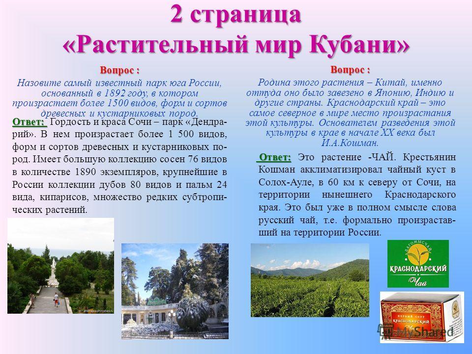 2 страница «Растительный мир Кубани» Вопрос : Назовите самый известный парк юга России, основанный в 1892 году, в котором произрастает более 1500 видов, форм и сортов древесных и кустарниковых пород. Ответ: Ответ: Гордость и краса Сочи – парк «Дендра