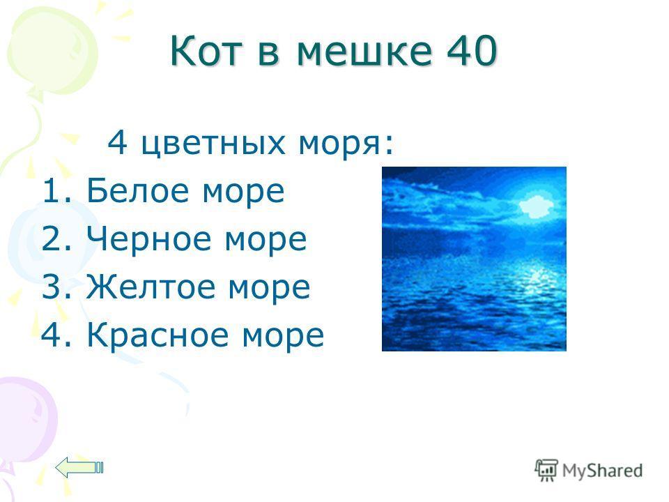 Кот в мешке 40 4 цветных моря: 1. Белое море 2. Черное море 3. Желтое море 4. Красное море