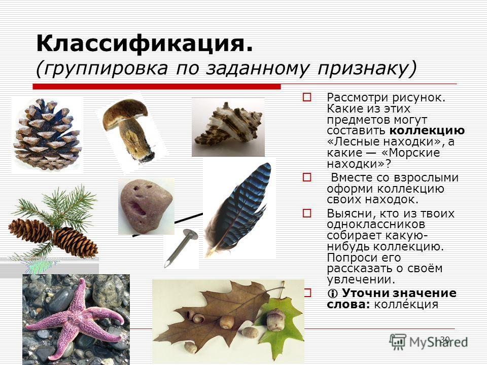 30 Классификация. (группировка по заданному признаку) Рассмотри рисунок. Какие из этих предметов могут составить коллекцию «Лесные находки», а какие «Морские находки»? Вместе со взрослыми оформи коллекцию своих находок. Выясни, кто из твоих однокласс