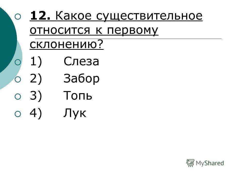12. Какое существительное относится к первому склонению? 1) Слеза 2) Забор 3) Топь 4) Лук