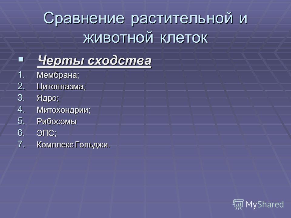 Сравнение растительной и животной клеток Черты сходства Черты сходства 1. Мембрана; 2. Цитоплазма; 3. Ядро; 4. Митохондрии; 5. Рибосомы 6. ЭПС; 7. Комплекс Гольджи.