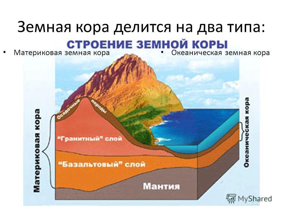 Земная кора делится на два типа: Материковая земная кора Океаническая земная кора