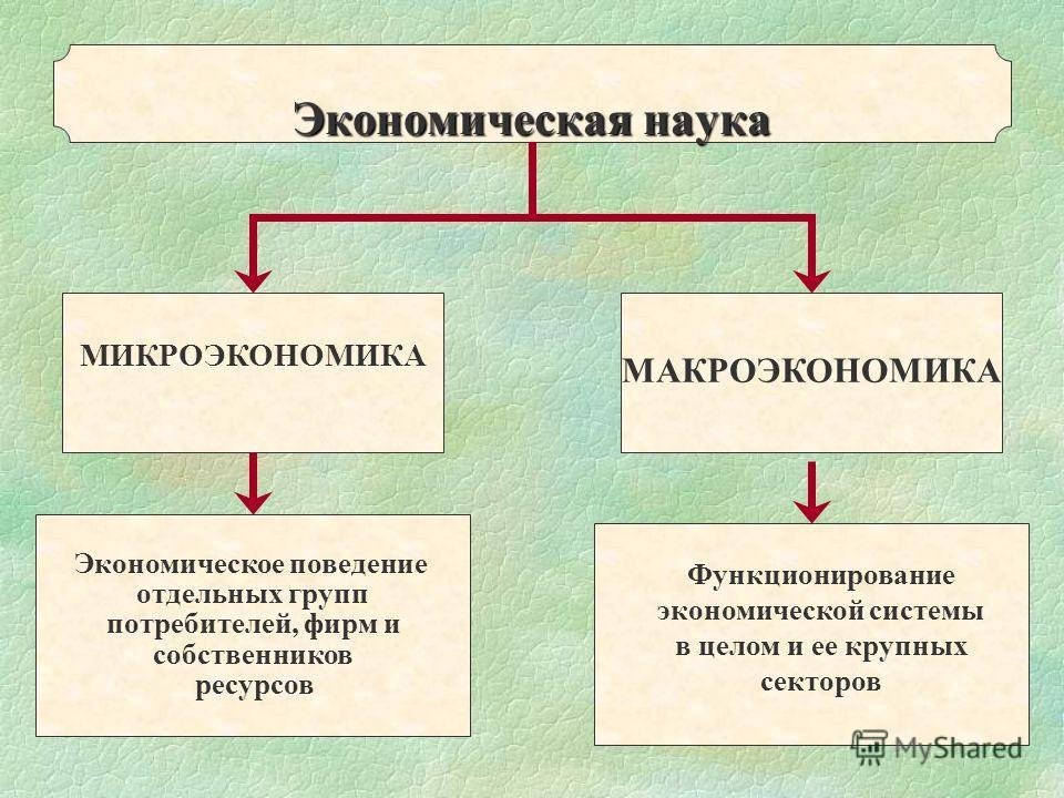 МИКРОЭКОНОМИКА МАКРОЭКОНОМИКА Экономическое поведение отдельных групп потребителей, фирм и собственников ресурсов Экономическая наука Функционирование экономической системы в целом и ее крупных секторов