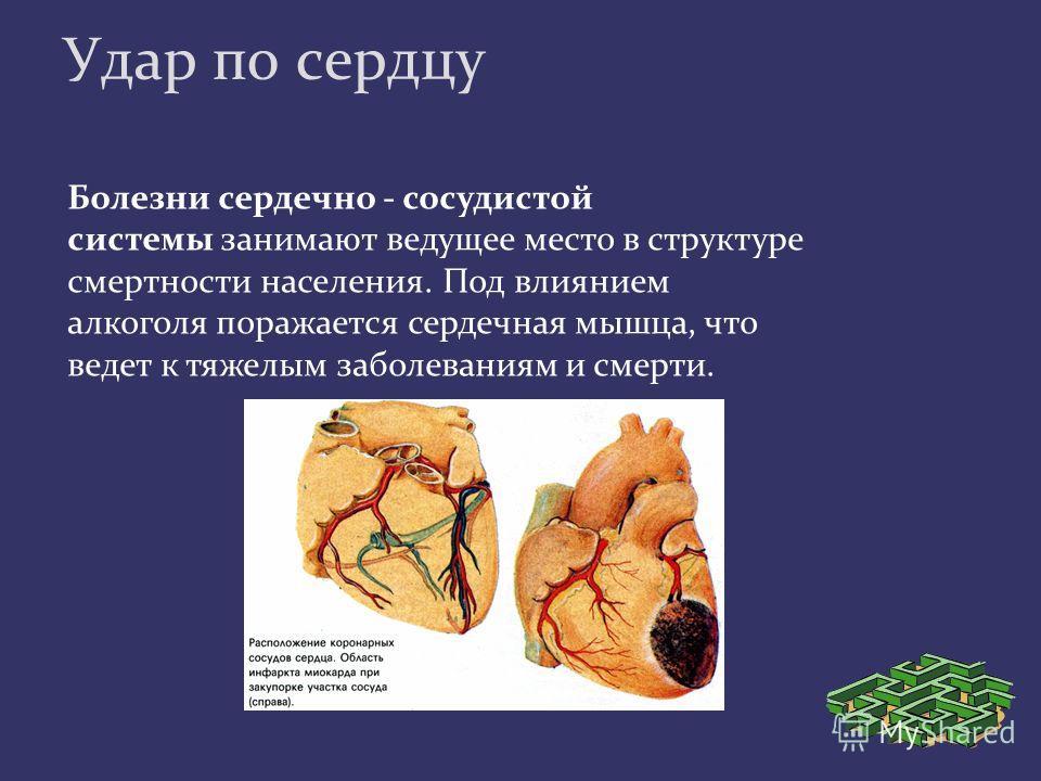 Удар по сердцу Болезни сердечно - сосудистой системы занимают ведущее место в структуре смертности населения. Под влиянием алкоголя поражается сердечная мышца, что ведет к тяжелым заболеваниям и смерти.