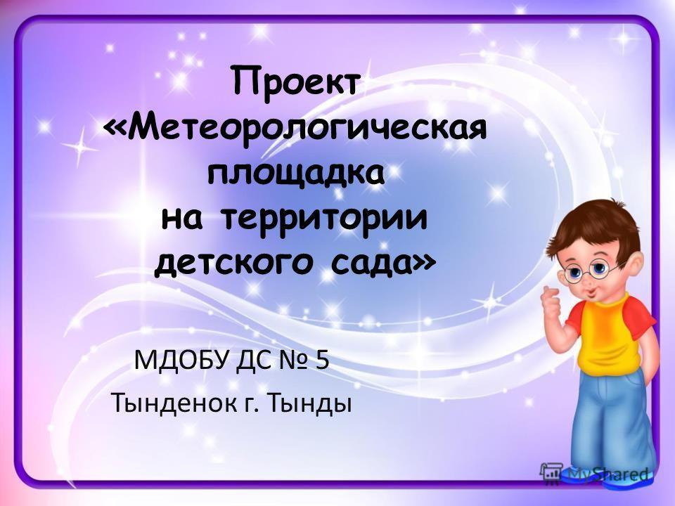 Проект «Метеорологическая площадка на территории детского сада» МДОБУ ДС 5 Тынденок г. Тынды