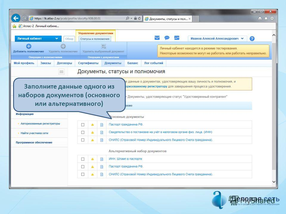 Заполните данные одного из наборов документов (основного или альтернативного)