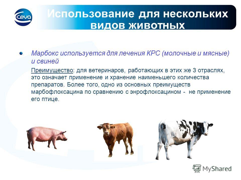 Использование для нескольких видов животных Марбокс используется для лечения КРС (молочные и мясные) и свиней Преимущество: для ветеринаров, работающих в этих же 3 отраслях, это означает применение и хранение наименьшего количества препаратов. Более