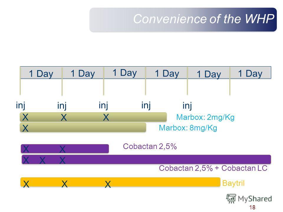 Convenience of the WHP 18 1 Day inj X X X X X X 1 Day Marbox: 2mg/Kg Marbox: 8mg/Kg Cobactan 2,5% Cobactan 2,5% + Cobactan LC Baytril X X X