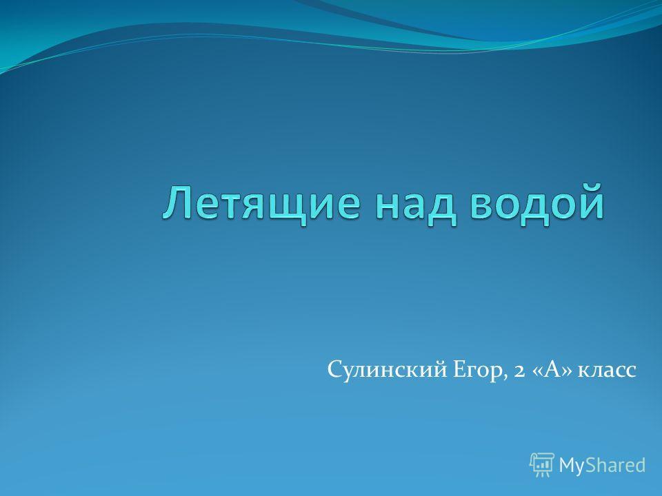 Сулинский Егор, 2 «А» класс