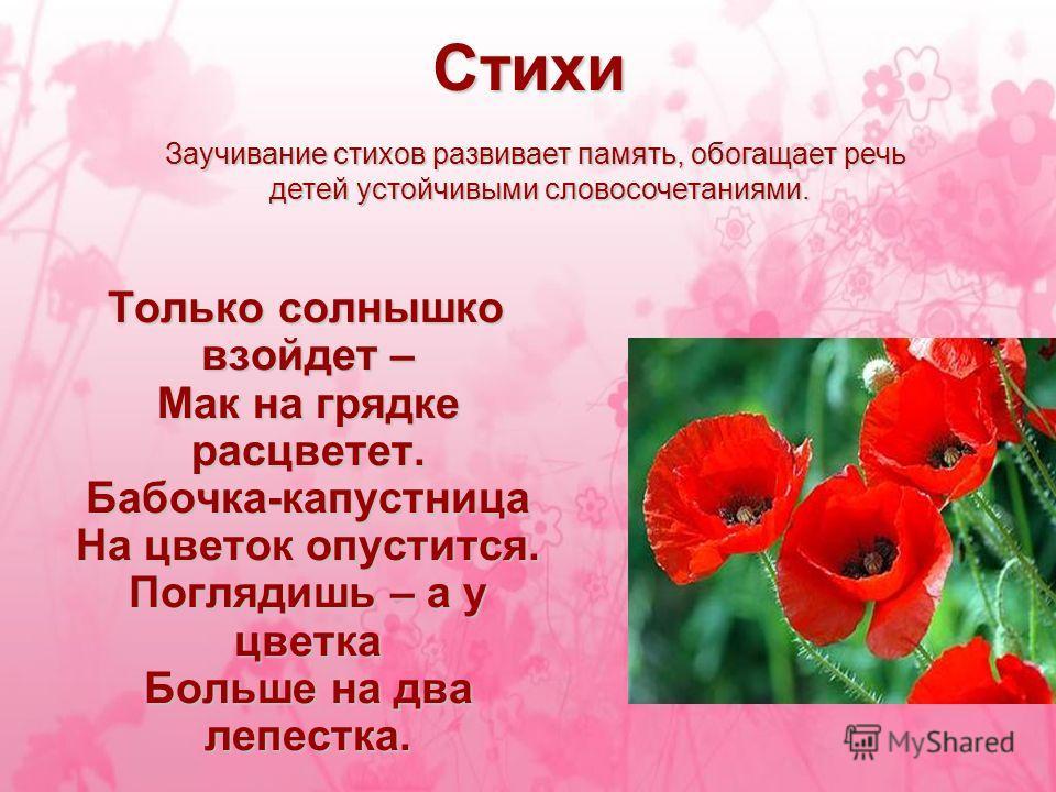 Стихи цветок