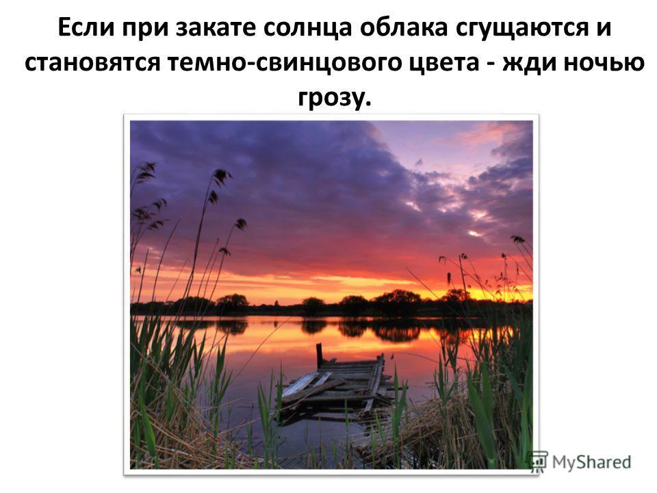Рыбы над водой выпрыгивают, ловят мошек – значит будет дождь.