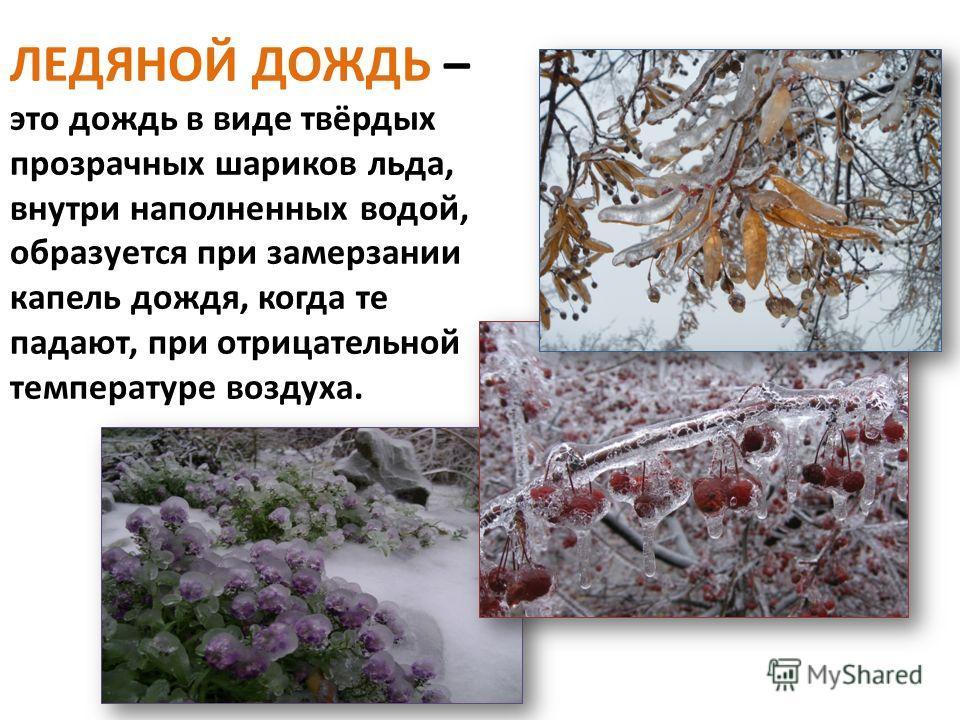 Всё чаще по утрам появляется ИНЕЙ – это частички застывшей росы, которые похожи на колючие снежинки.