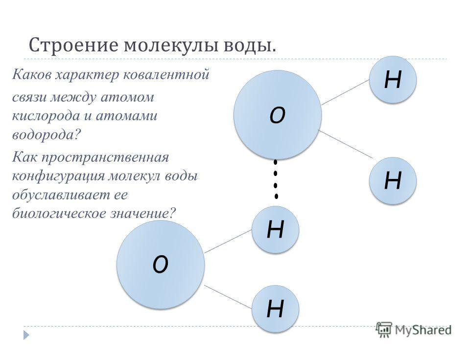 Строение молекулы воды. О О H H H H H H H H O O Каков характер ковалентной связи между атомом кислорода и атомами водорода? Как пространственная конфигурация молекул воды обуславливает ее биологическое значение?