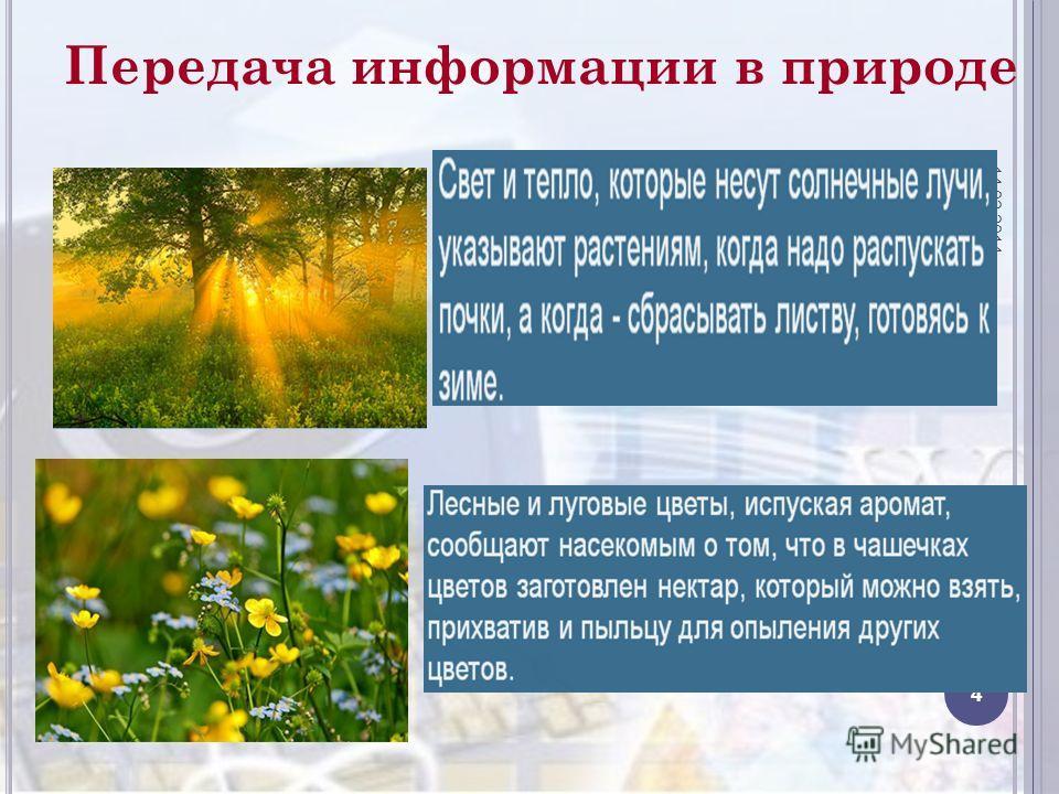 Передача информации в природе 14.02.2014 4