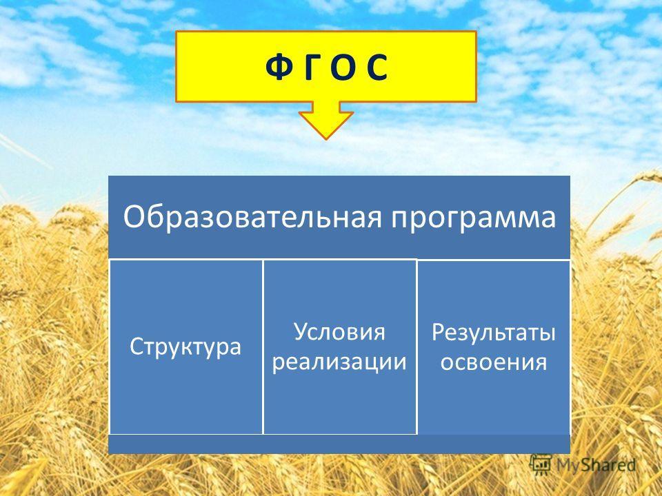 Ф Г О С Образовательная программа Структура Условия реализации Результаты освоения