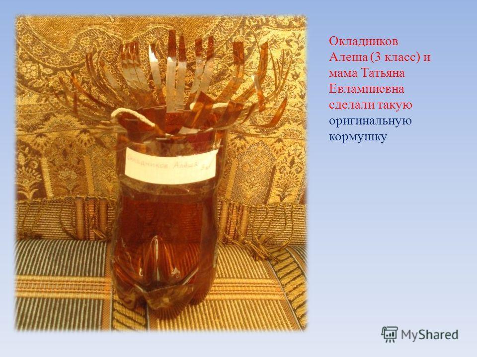 Окладников Алеша (3 класс) и мама Татьяна Евлампиевна сделали такую оригинальную кормушку