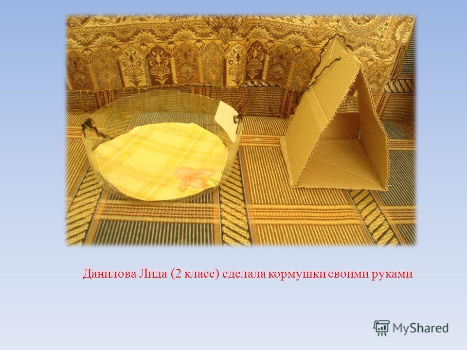 Данилова Лида (2 класс) сделала кормушки своими руками