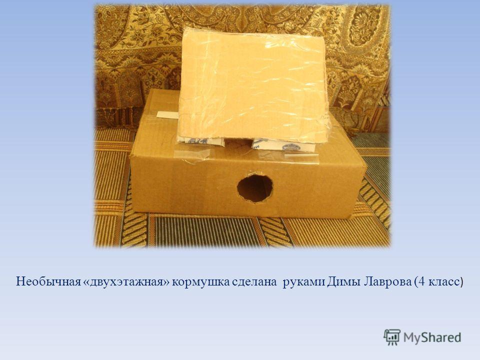 Необычная «двухэтажная» кормушка сделана руками Димы Лаврова (4 класс )