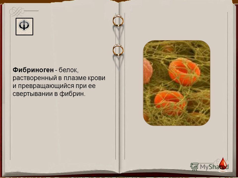 Фибриноген - белок, растворенный в плазме крови и превращающийся при ее свертывании в фибрин.