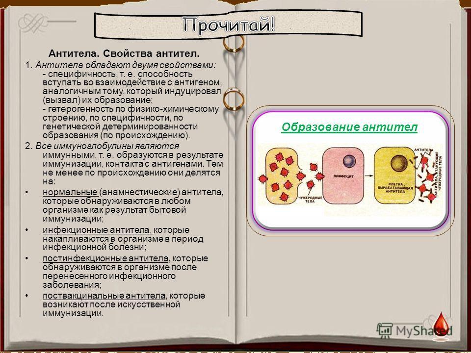 антитоксин это антитело
