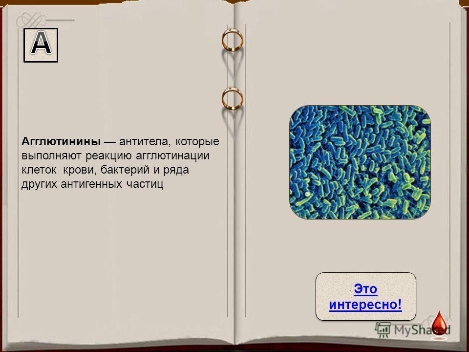 Агглютинины антитела, которые выполняют реакцию агглютинации клеток крови, бактерий и ряда других антигенных частиц Это интересно! Это интересно!