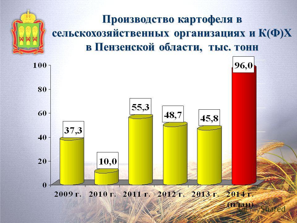 Производство картофеля в сельскохозяйственных организациях и К(Ф)Х в Пензенской области, тыс. тонн