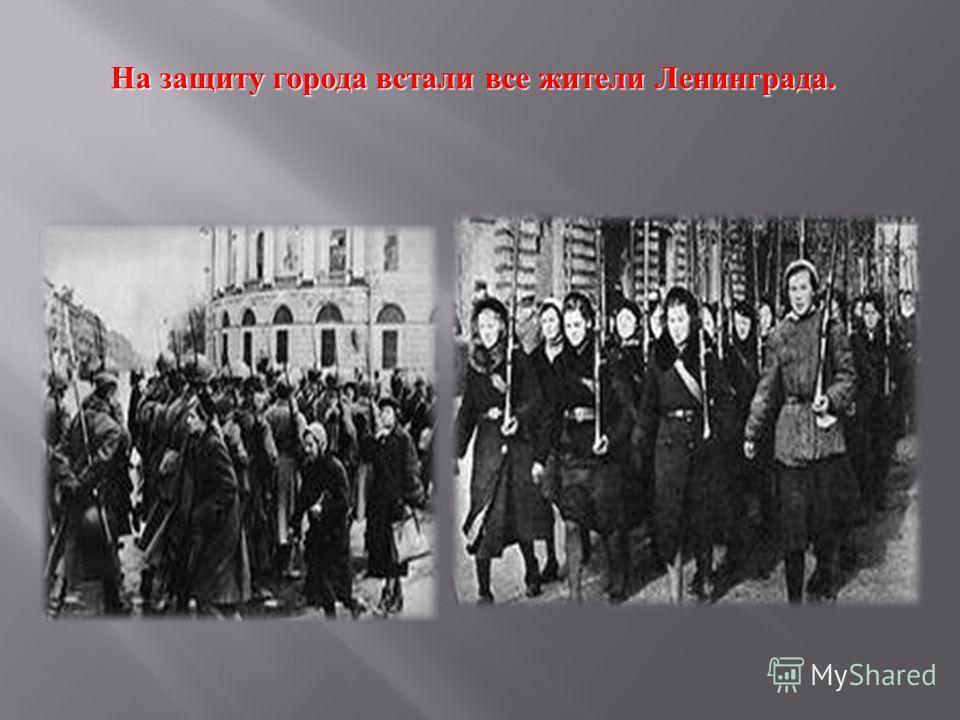 На защиту города встали все жители Ленинграда.