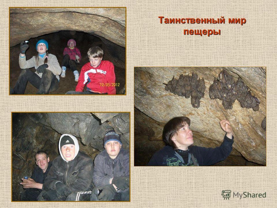 Таинственный мир пещеры