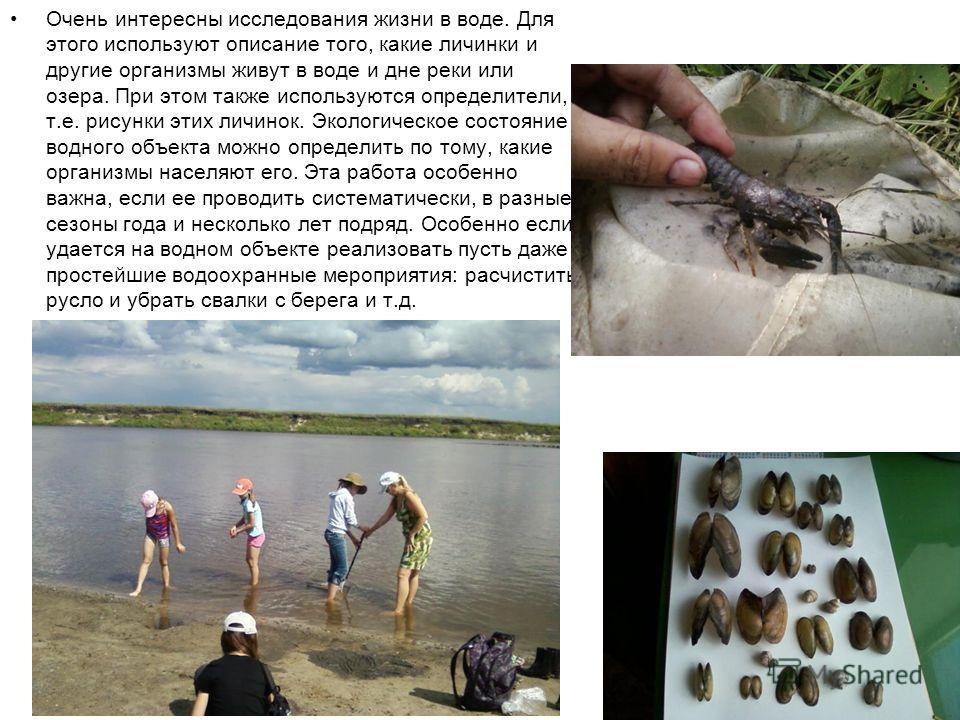 Очень интересны исследования жизни в воде. Для этого используют описание того, какие личинки и другие организмы живут в воде и дне реки или озера. При этом также используются определители, т.е. рисунки этих личинок. Экологическое состояние водного об