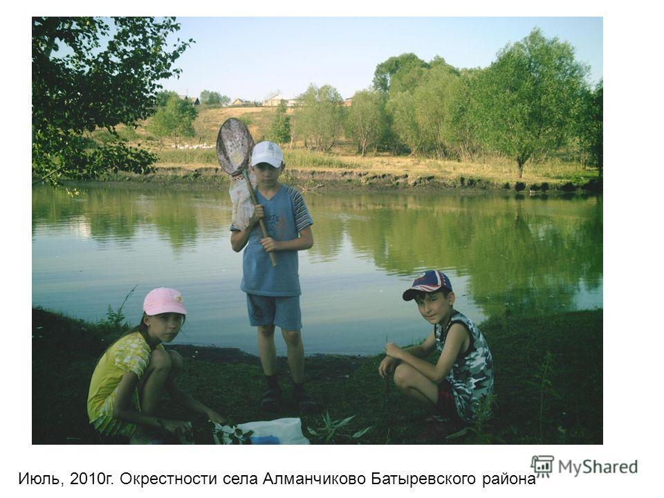 Июль, 2010г. Окрестности села Алманчиково Батыревского района