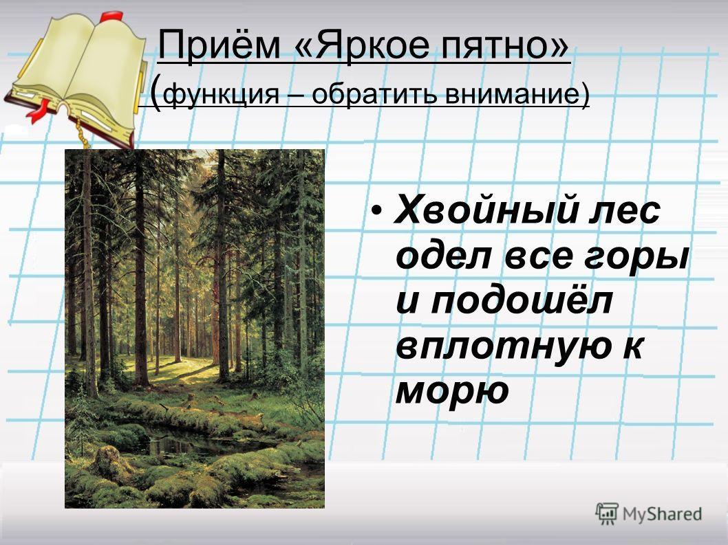 Приём «Яркое пятно» ( функция – обратить внимание) Хвойный лес одел все горы и подошёл вплотную к морю