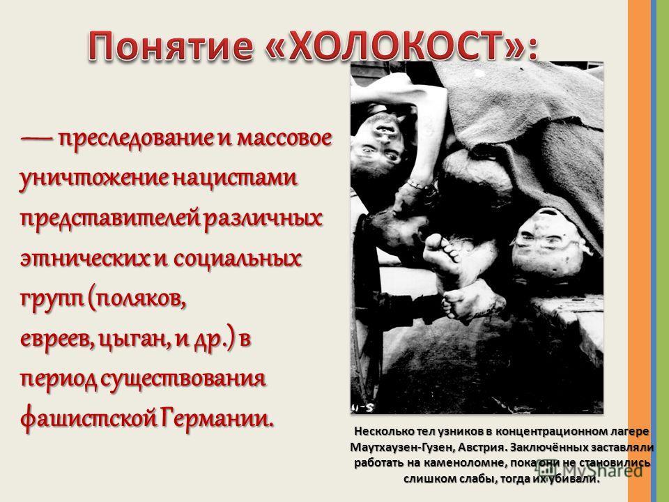 преследование и массовое уничтожение нацистами представителей различных этнических и социальных групп (поляков, евреев, цыган, и др.) в период существования фашистской Германии. преследование и массовое уничтожение нацистами представителей различных