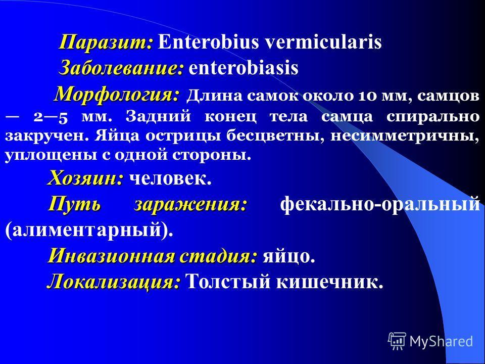 Паразит: Паразит: Enterobius vermicularis Заболевание: Заболевание: enterobiasis Морфология: Морфология: Длина самок около 10 мм, самцов 25 мм. Задний конец тела самца спирально закручен. Яйца острицы бесцветны, несимметричны, уплощены с одной сторо