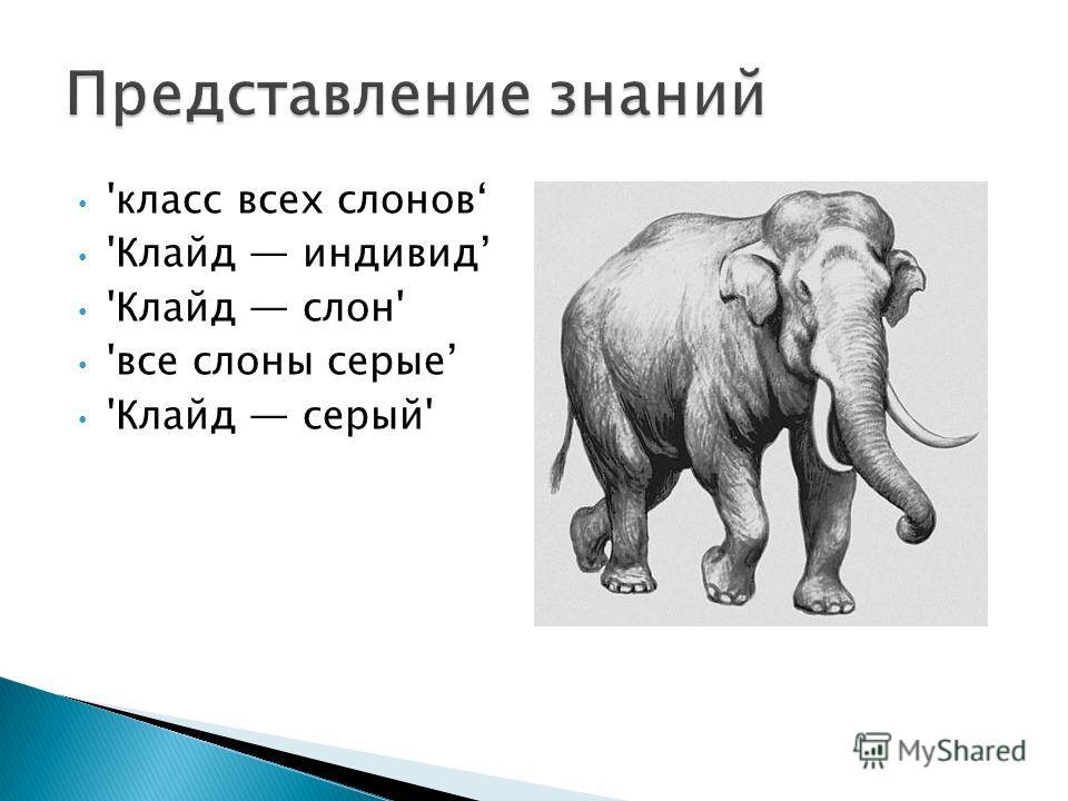 'класс всех слонов 'Клайд индивид 'Клайд слон' 'все слоны серые 'Клайд серый'