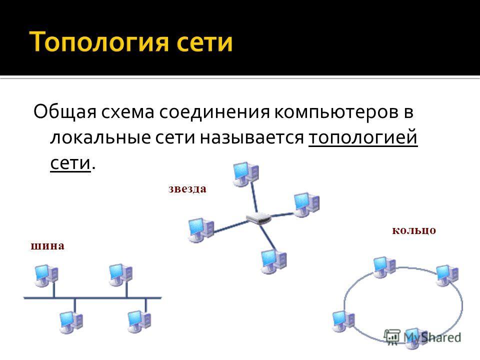 Общая схема соединения компьютеров в локальные сети называется топологией сети. шина звезда кольцо