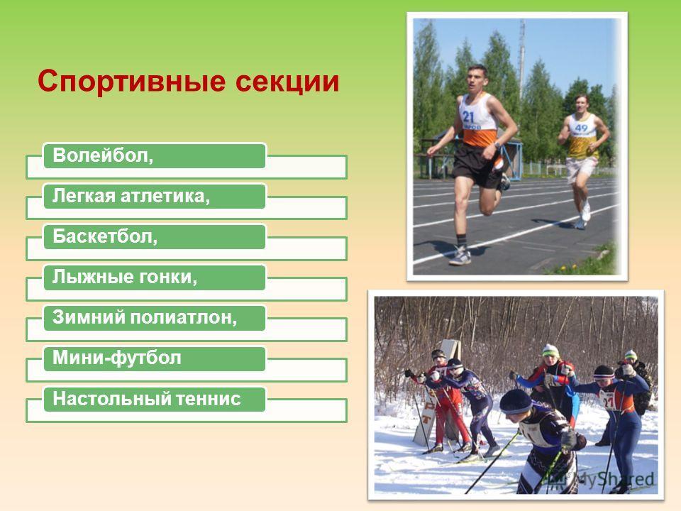 Спортивные секции Волейбол,Легкая атлетика,Баскетбол,Лыжные гонки,Зимний полиатлон,Мини-футболНастольный теннис