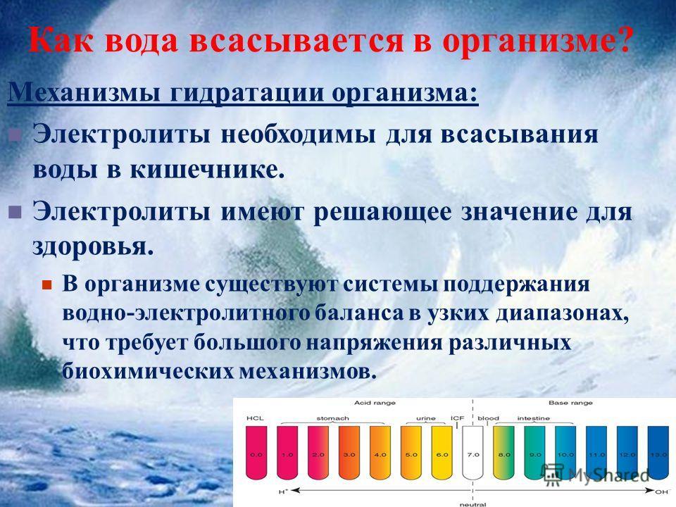 Как вода всасывается в организме? Механизмы гидратации организма: Электролиты необходимы для всасывания воды в кишечнике. Электролиты имеют решающее значение для здоровья. В организме существуют системы поддержания водно-электролитного баланса в узки