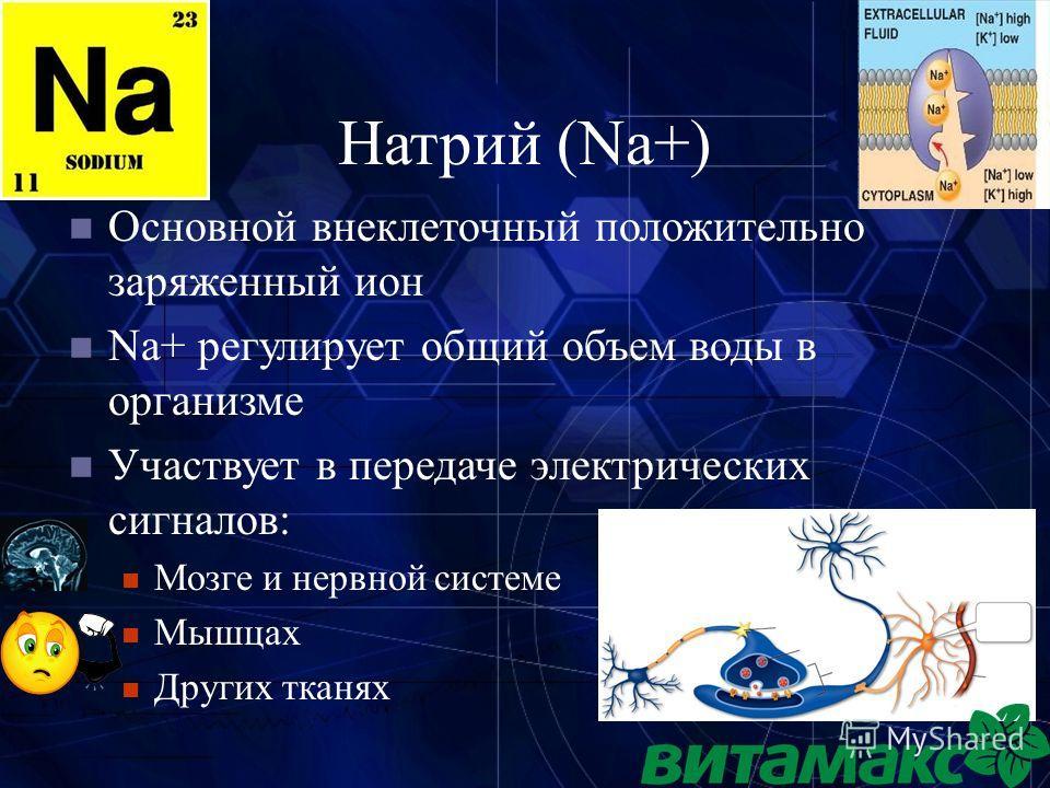 9 Натрий (Na+) Основной внеклеточный положительно заряженный ион Na+ регулирует общий объем воды в организме Участвует в передаче электрических сигналов: Мозге и нервной системе Мышцах Других тканях