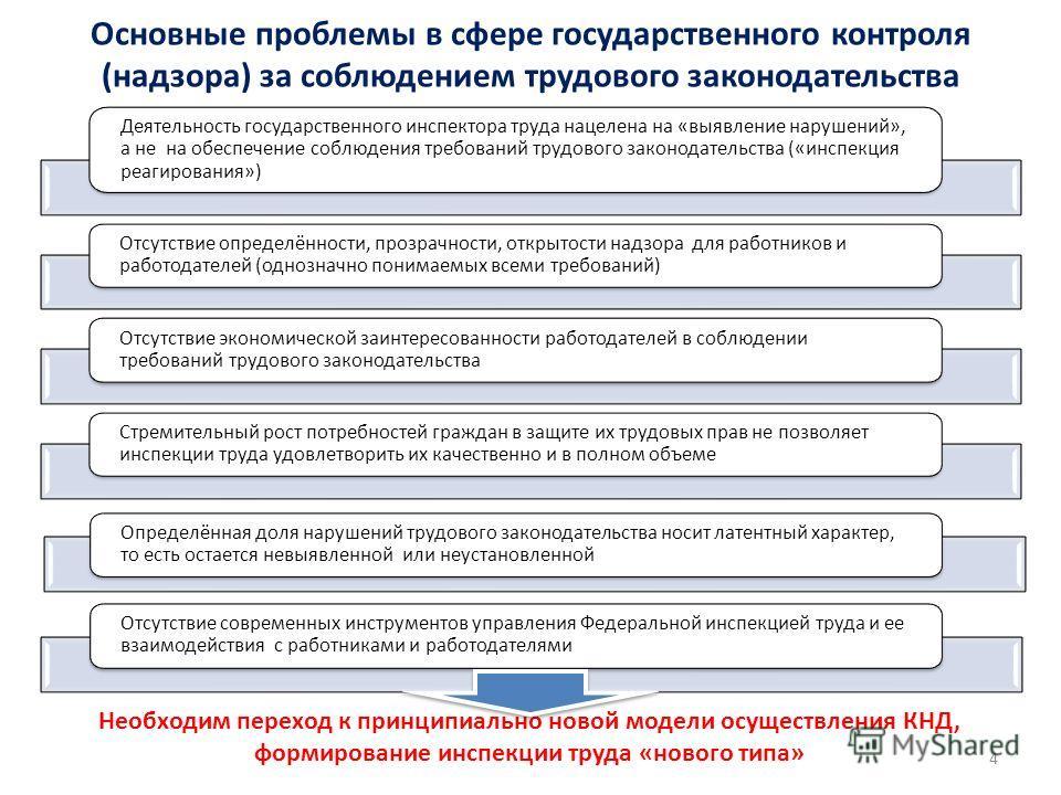 Основные проблемы в сфере государственного контроля (надзора) за соблюдением трудового законодательства Деятельность государственного инспектора труда нацелена на «выявление нарушений», а не на обеспечение соблюдения требований трудового законодатель