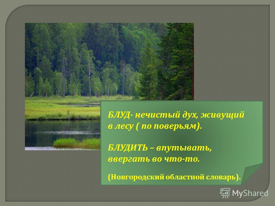 БЛУД- нечистый дух, живущий в лесу ( по поверьям). БЛУДИТЬ – впутывать, ввергать во что-то. (Новгородский областной словарь).