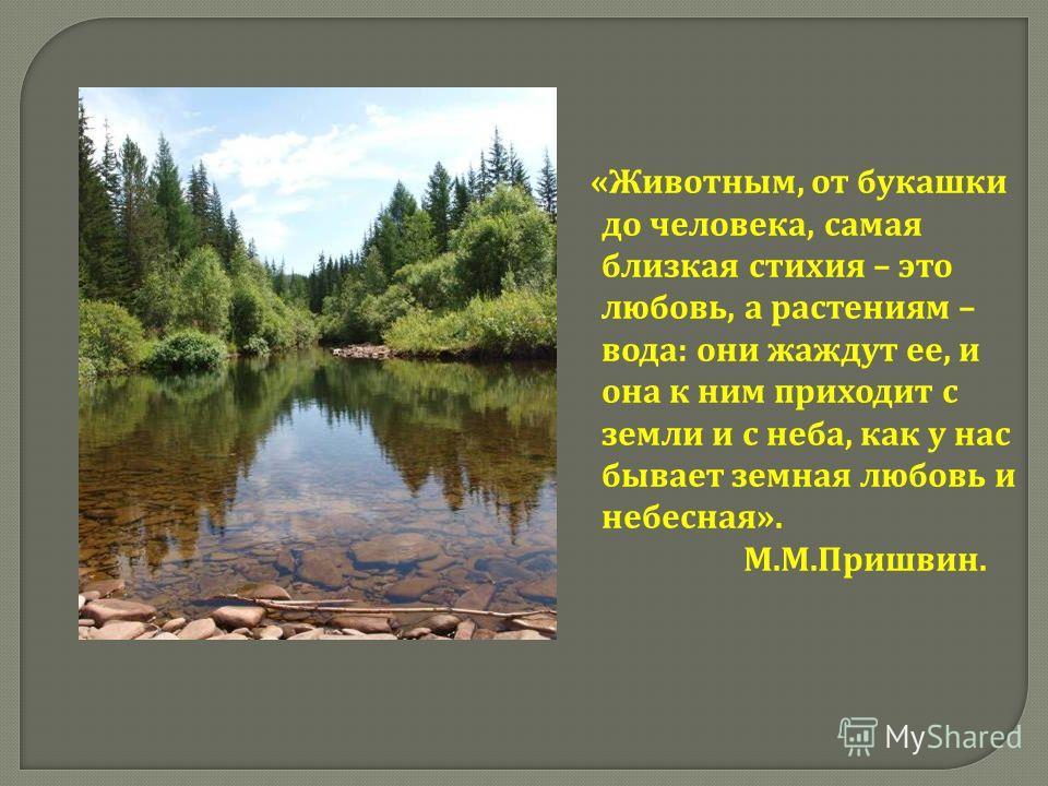 « Животным, от букашки до человека, самая близкая стихия – это любовь, а растениям – вода : они жаждут ее, и она к ним приходит с земли и с неба, как у нас бывает земная любовь и небесная ». М. М. Пришвин.