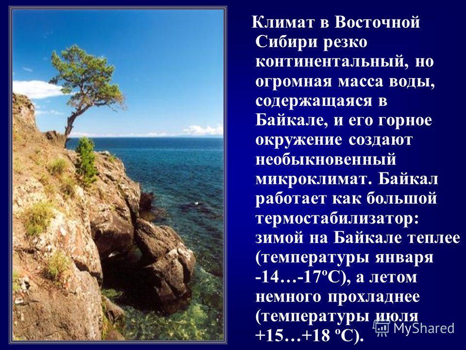 Климат в Восточной Сибири резко континентальный, но огромная масса воды, содержащаяся в Байкале, и его горное окружение создают необыкновенный микроклимат. Байкал работает как большой термостабилизатор: зимой на Байкале теплее (температуры января -14