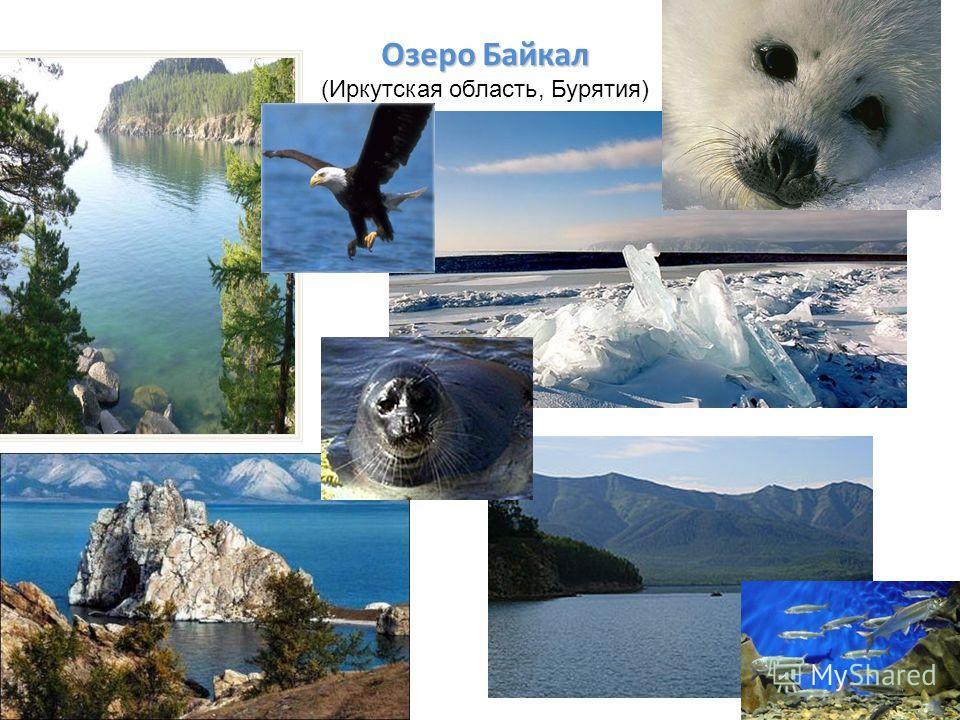 Озеро Байкал Озеро Байкал (Иркутская область, Бурятия)