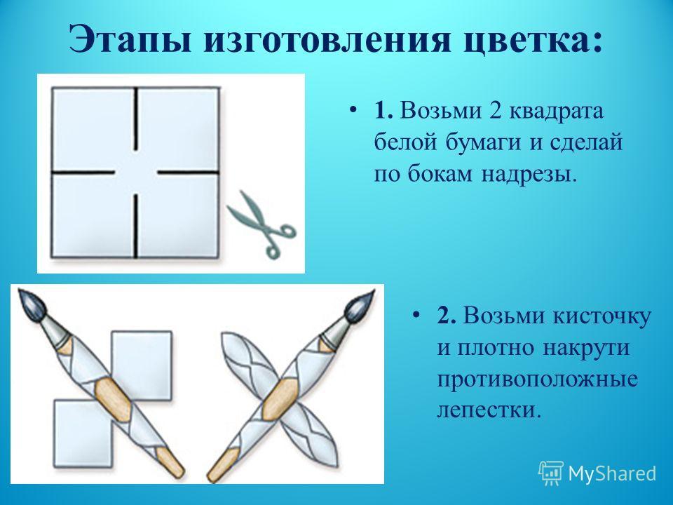 Этапы изготовления цветка : 1. Возьми 2 квадрата белой бумаги и сделай по бокам надрезы. 2. Возьми кисточку и плотно накрути противоположные лепестки.