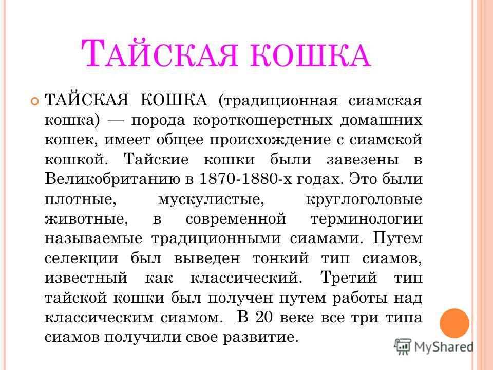 Т АЙСКАЯ КОШКА ТАЙСКАЯ КОШКА (традиционная сиамская кошка) порода короткошерстных домашних кошек, имеет общее происхождение с сиамской кошкой. Тайские кошки были завезены в Великобританию в 1870-1880-х годах. Это были плотные, мускулистые, круглоголо