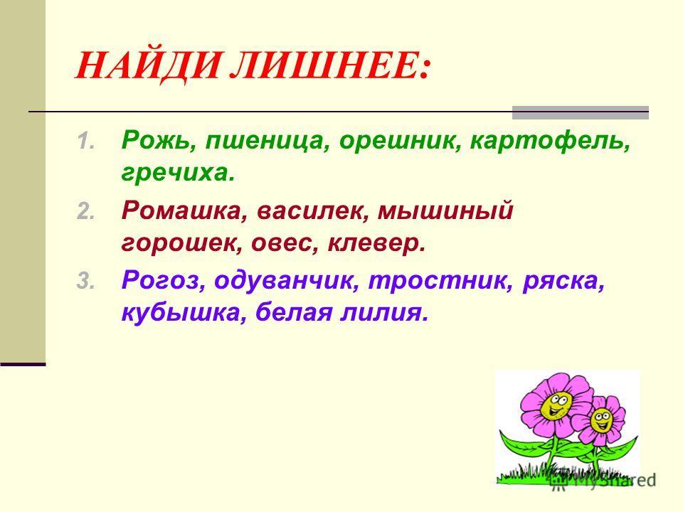 НАЙДИ ЛИШНЕЕ: 1. Рожь, пшеница, орешник, картофель, гречиха. 2. Ромашка, василек, мышиный горошек, овес, клевер. 3. Рогоз, одуванчик, тростник, ряска, кубышка, белая лилия.