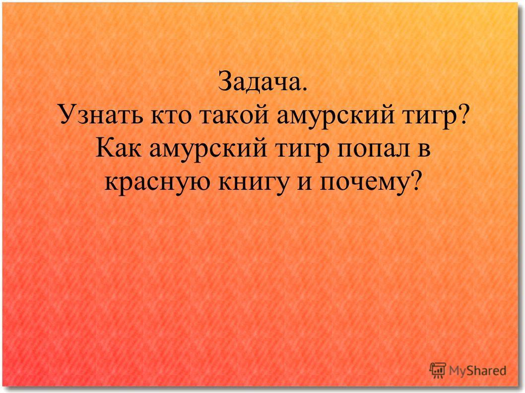Задача. Узнать кто такой амурский тигр? Как амурский тигр попал в красную книгу и почему?