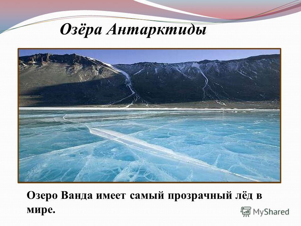 Озеро Ванда имеет самый прозрачный лёд в мире. Озёра Антарктиды