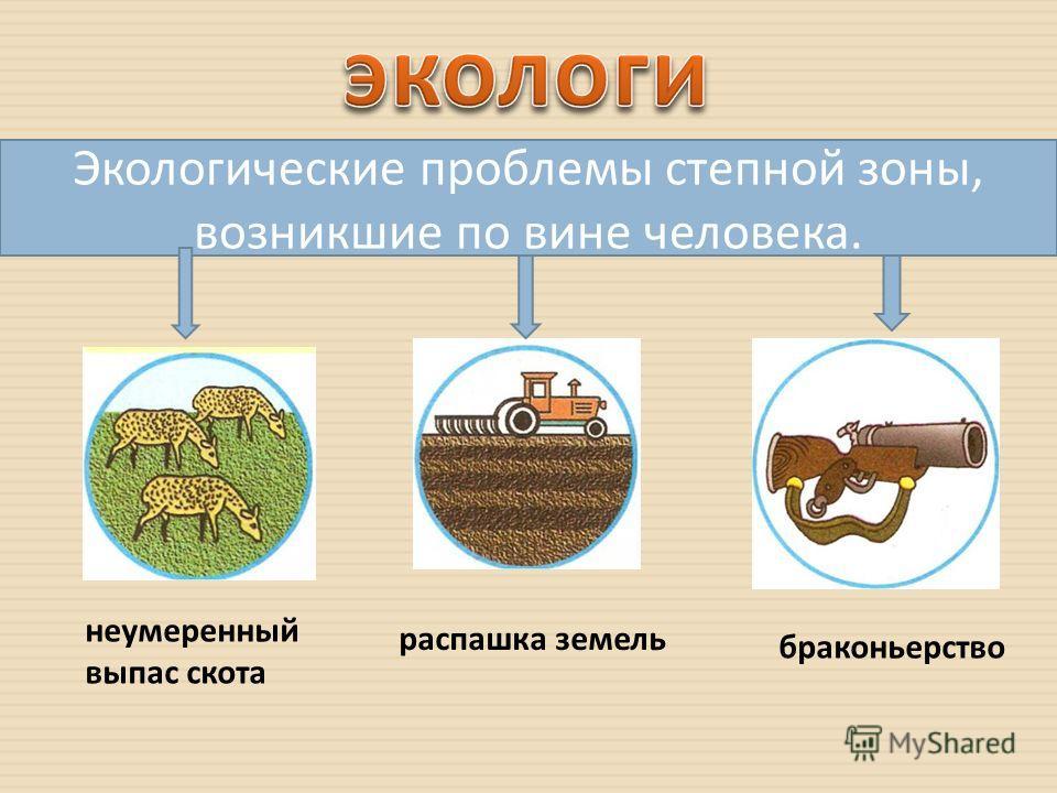 Экологические проблемы степной зоны, возникшие по вине человека. распашка земель неумеренный выпас скота браконьерство